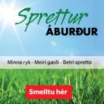 Sprettur-webbanner_310x400